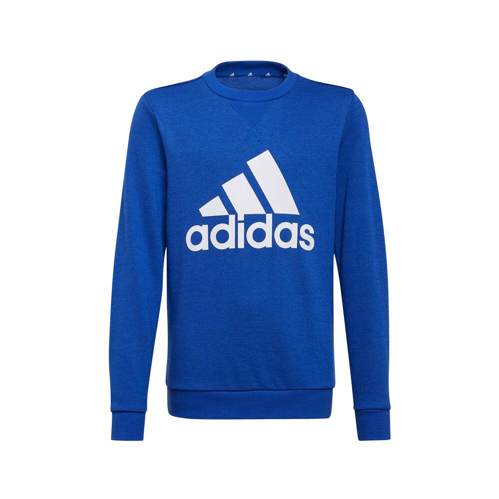 Essentials Big Logo Sweatshirt Men