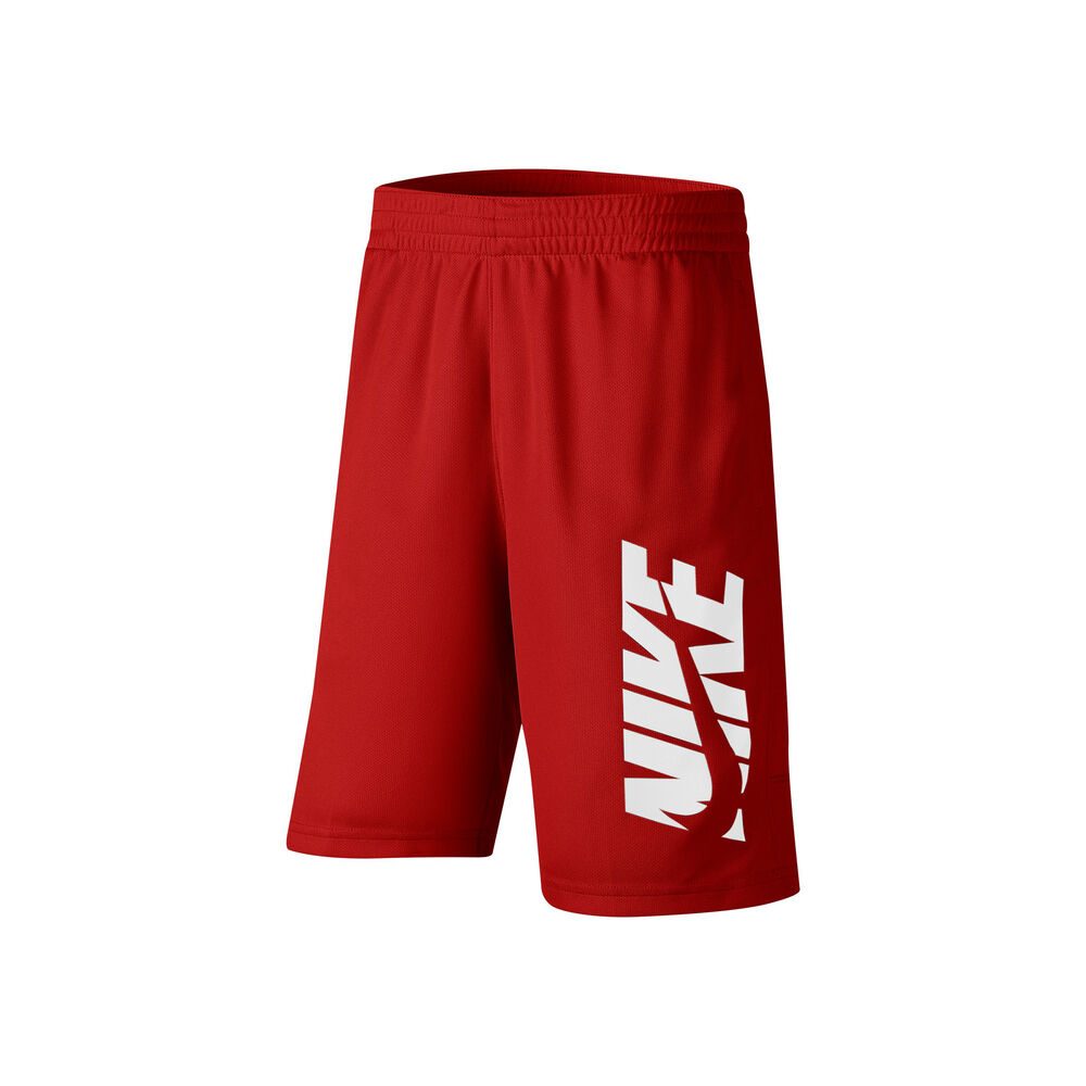 Dri-Fit Shorts Men