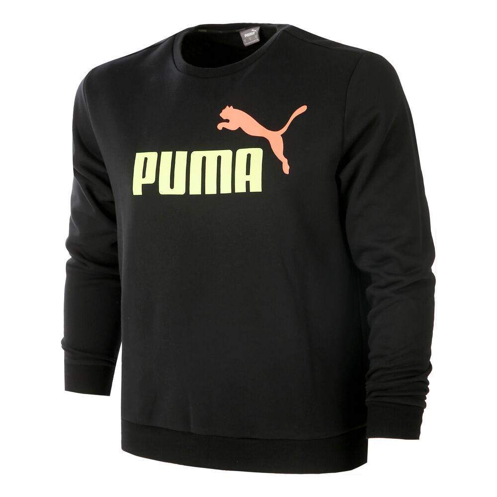 Essential 2 Color Big Logo Sweatshirt Men