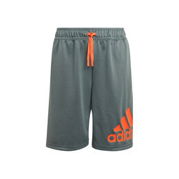 Big Logo Shorts